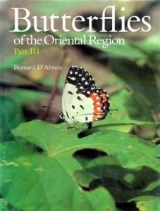 14. Oriental III