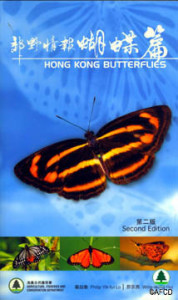 bookcover_butterflies2